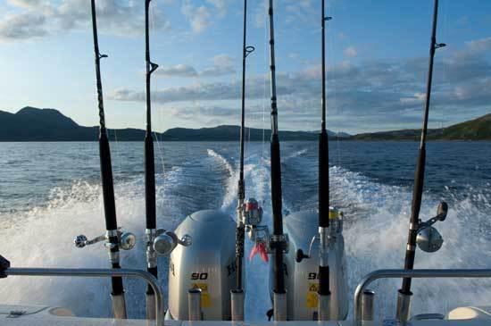 fiskestaenger_nordnorge