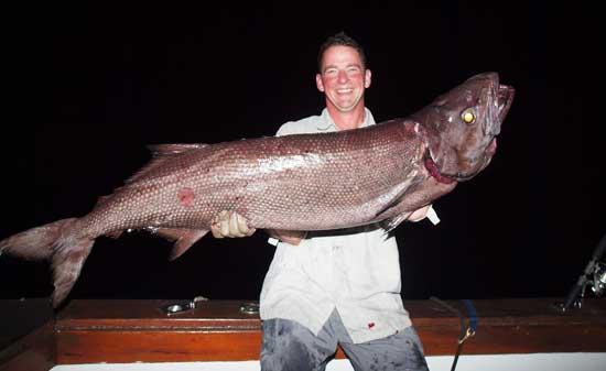 per_m_holmgren_oilfish_24_kg
