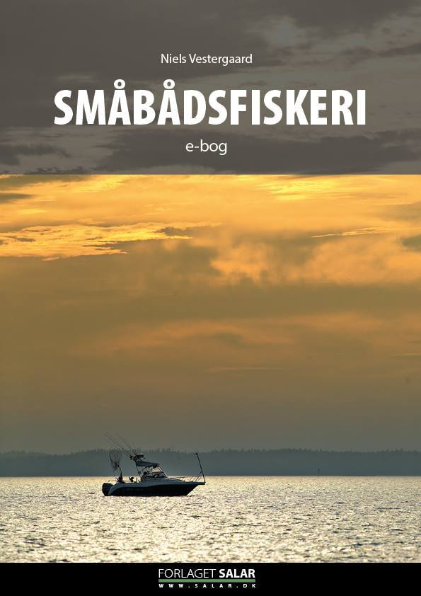 smaabaadsfiskeri_niels_vestergaard