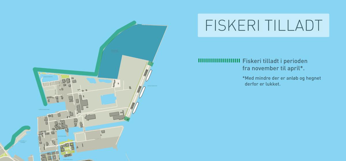 fiskeri_kobenhavnshavn